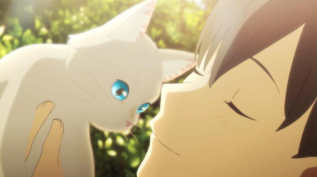 どんなときも作品との出会いは止まらない 『泣きたい私は猫をかぶる』が描く幸せを感じるための大冒険