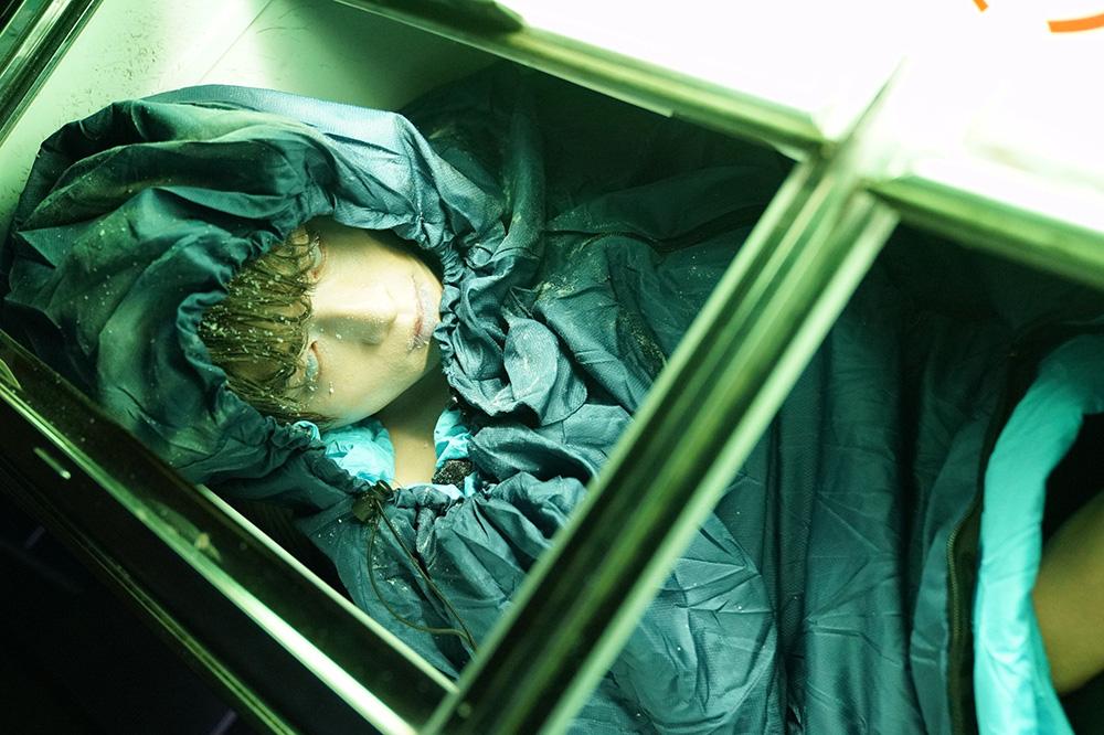 「私の夫は冷凍庫に眠っている」