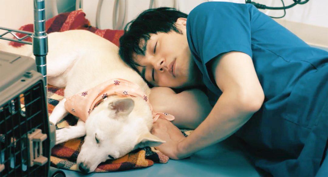 林遣都が語る、俳優生活15年を迎えた今の想いと熱血医師を演じた主演映画『犬部!』のこと